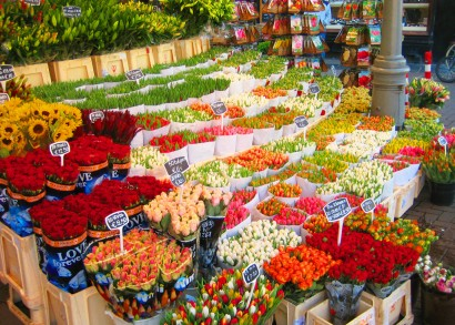 Amsterdam-Flower-Market-Bloemenmarkt